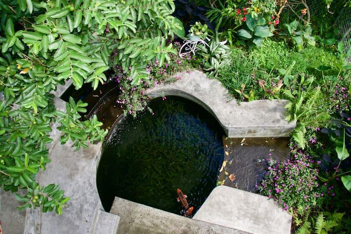 Private Gardens and Koi Pond