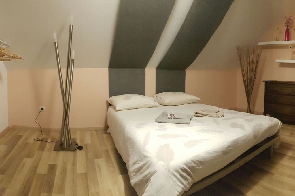 Jolie chambre dans appartement cosy appartements louer for Chambre agriculture champagne ardenne
