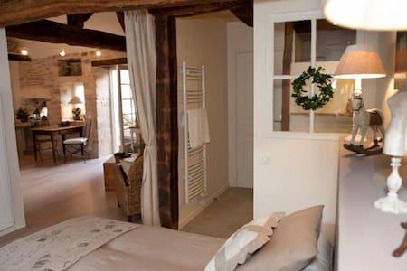 Jolie maison vigneronne à Pommard - Pommard