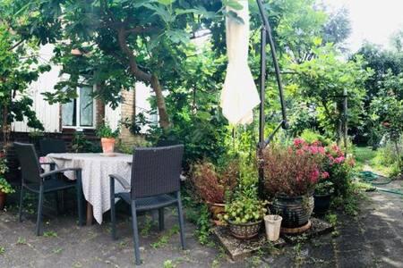 Cottage in the garden (in central Speyer)