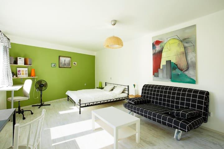 Fresh Penthouse Studio Wenceslas Sq