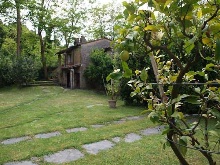 Elegante rustico nel verde delle colline lucchesi
