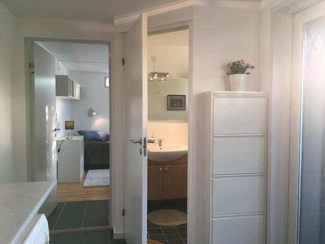 Entrance with room and bathroom