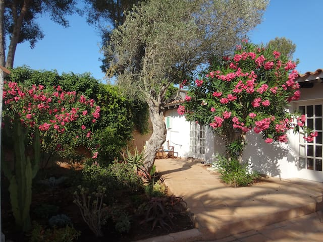 Private guesthouse on Ibiza Finca 2 - Ibiza - Huis
