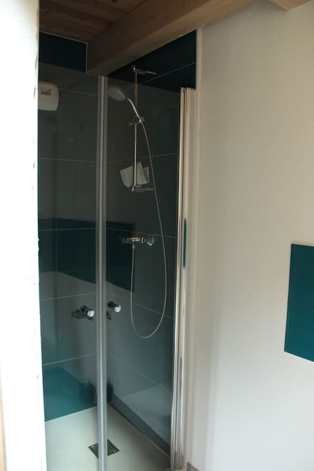 Ensuite shower family room