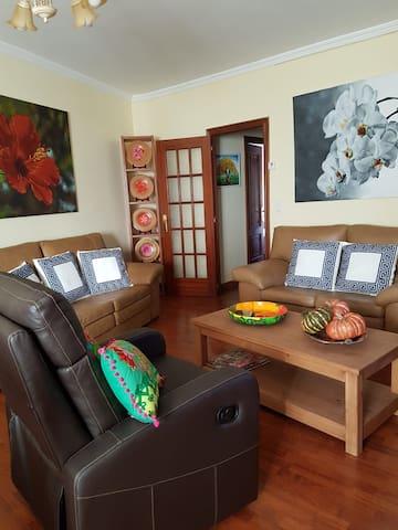 Monforte Centro Apartamento con Terraza