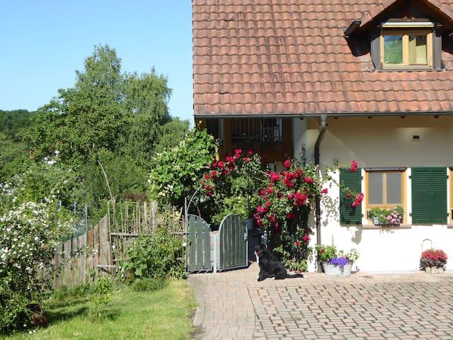 Waldblick - 50 qm Ferienwohnung