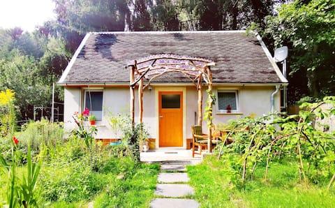 بيت صغير مع حديقة في كروم العنب