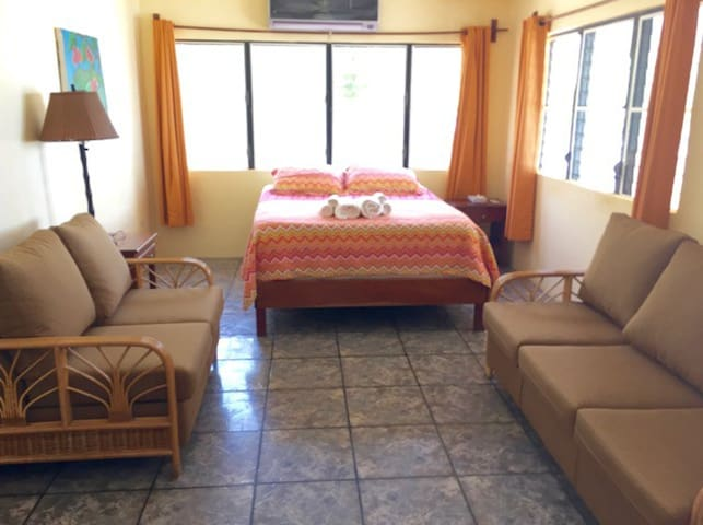 Main room with queen bed and sofa set
