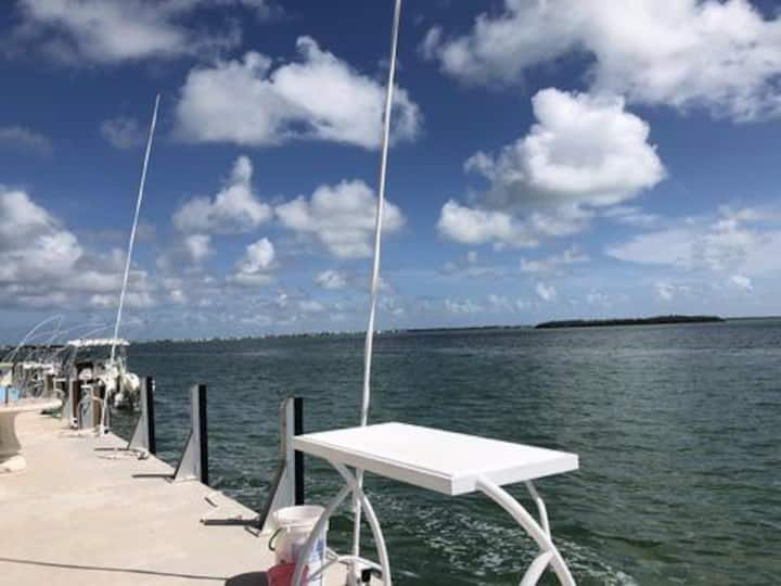 Paradise in the Keys, ON the Ocean! 35' frontage!