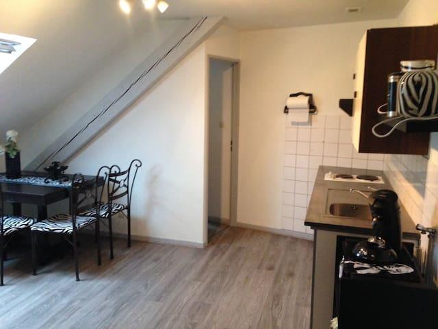 STUDIO REFAIT A NEUF 25 M² CENTRE VILLE BELFORT - Belfort - Wohnung