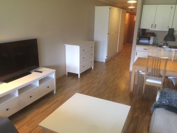 Koselig leilighet på Sirdal Høyfjellshotell (102)
