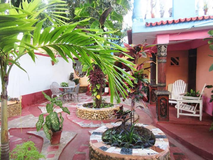 1Room, to enjoy terrace and patio with fruit trees