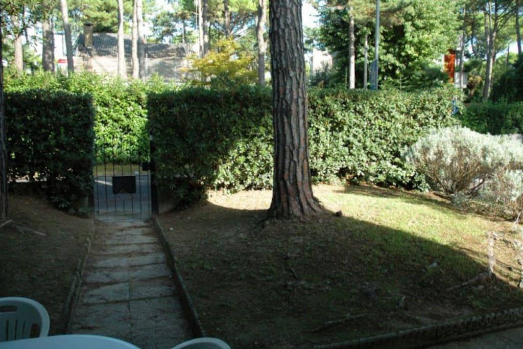 Giardino privato recintato | Private and fenced garden