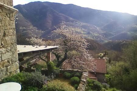 Hameau dans les monts d'Ardèche