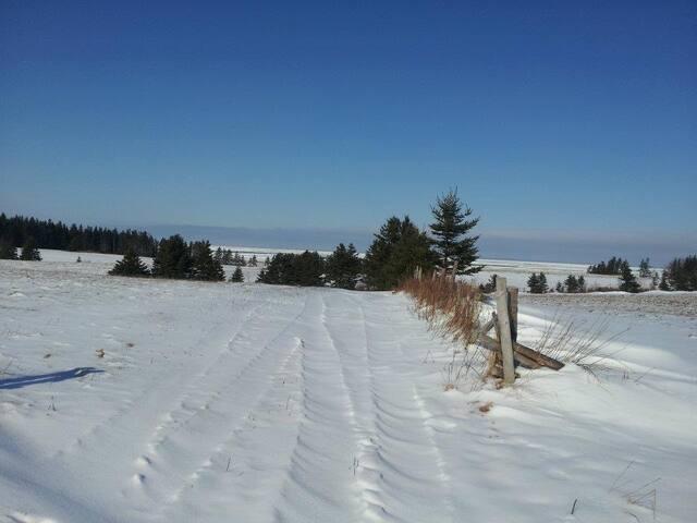 Island View Farmstead