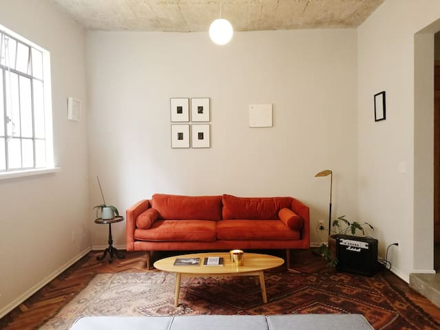 Cozy apartment in Roma Norte