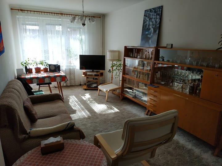 Two bedroom retro apartment