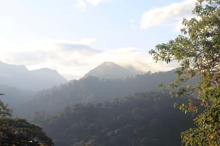 Mi Nidito - Tandayapa - Cabin