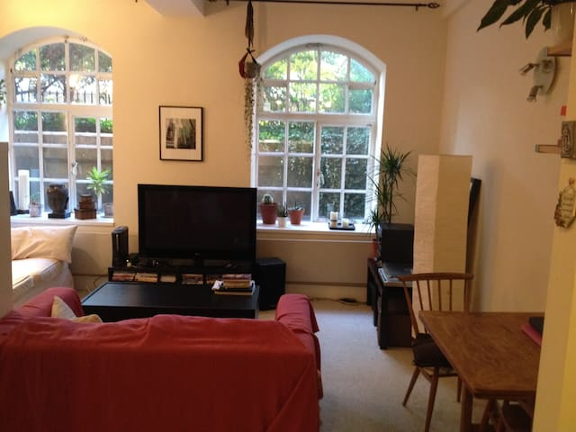 Entire apartment in North London