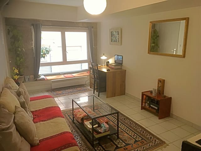 Cozy appartment in the heart of Lyon