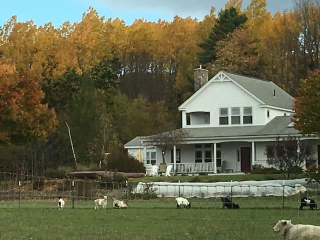 Scatter Good Farm