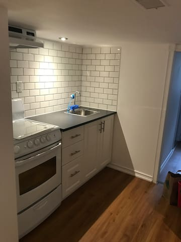 Newly renovated entire apartment