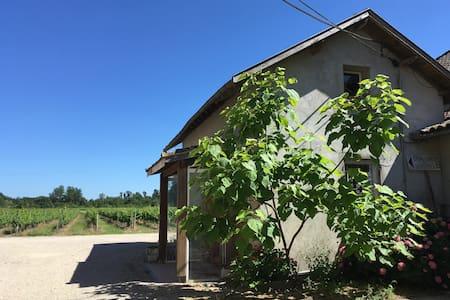 Gîte 4 pers avec vue sur les vignes - Albias