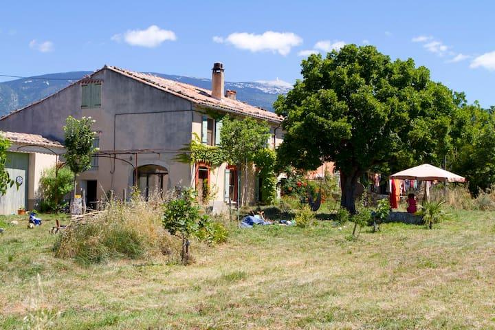 Mas éco-rustique au pied du Mont Ventoux, Bédoin