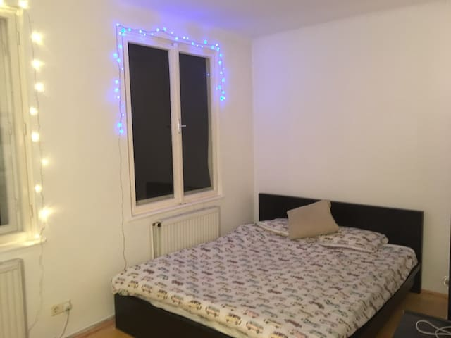 Huge comfy room in the beautiful 8th district. - Wien - Flat