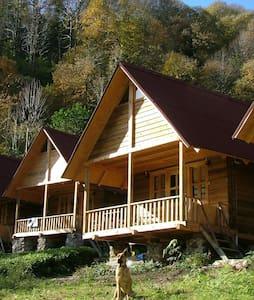 Ekolojik yaşam ve  bungalovlar. - Çamlıhemşin