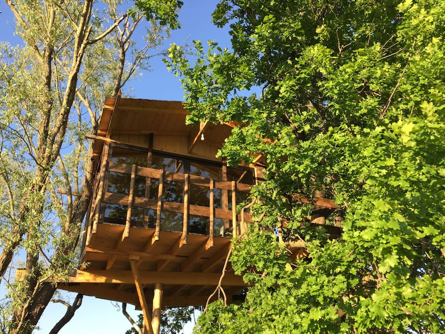 cabane dans les arbres treehouses for rent in courth zon provence alpes c te d 39 azur france. Black Bedroom Furniture Sets. Home Design Ideas
