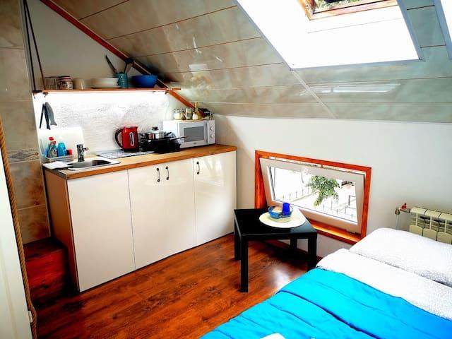 06B Meridian studio with Sauna