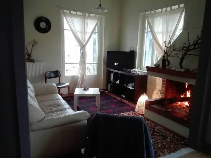 Sunny apartment in Sparta