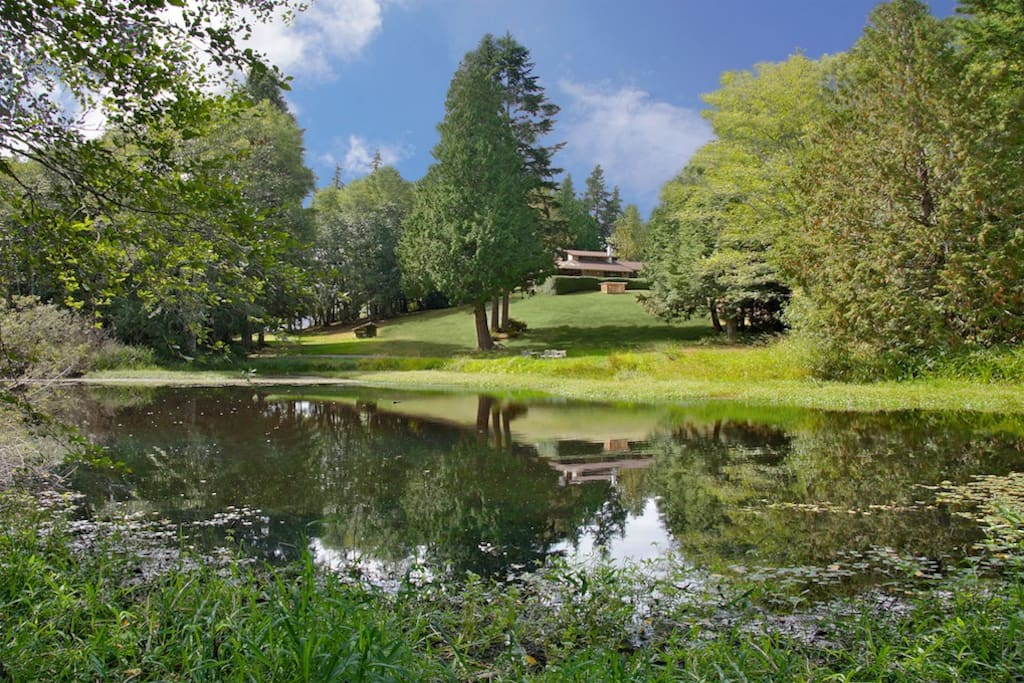 Kingston House is 27 acres of rolling lawns, gardens, woods and a grand mid-century home of douglas-fir and stone. Neither pretentious nor rustic, it is a quintessential Pacific Northwest setting for your celebration or weekend getaway.