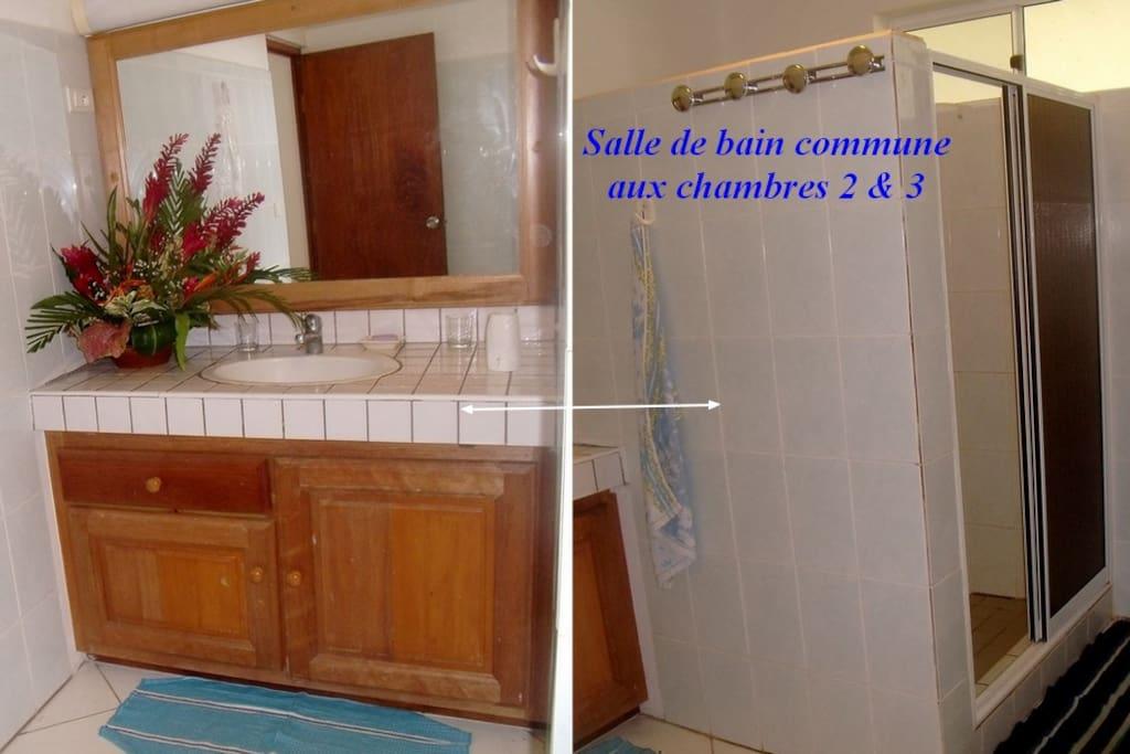 Salle de bains et wc communs située entre les chambres 2 - et 3,