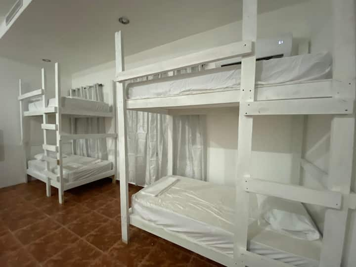 Hostel PR - Shared Mixed Bedroom Bunk Bed #5A