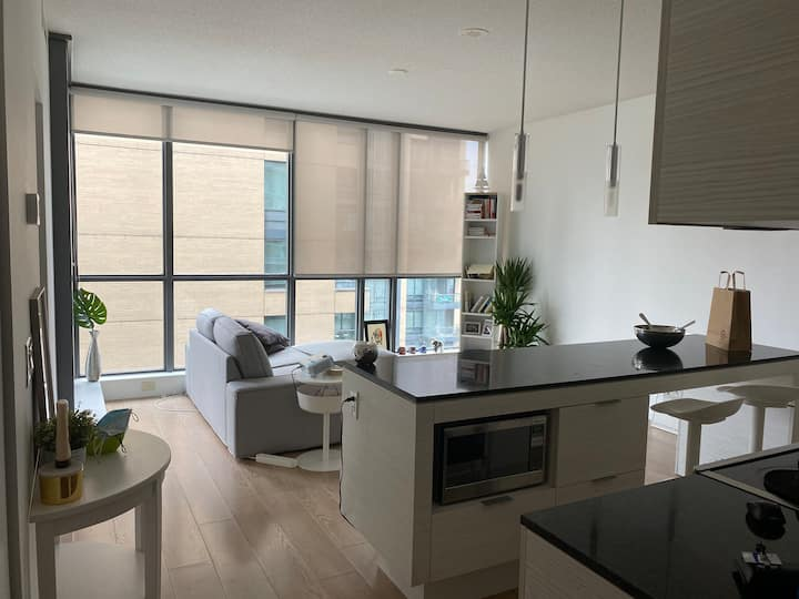 Beautiful condo in the heart of Toronto