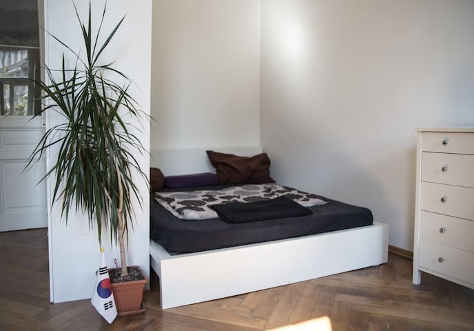 Sunny cosy flat in perfect location - Wien - Apartment