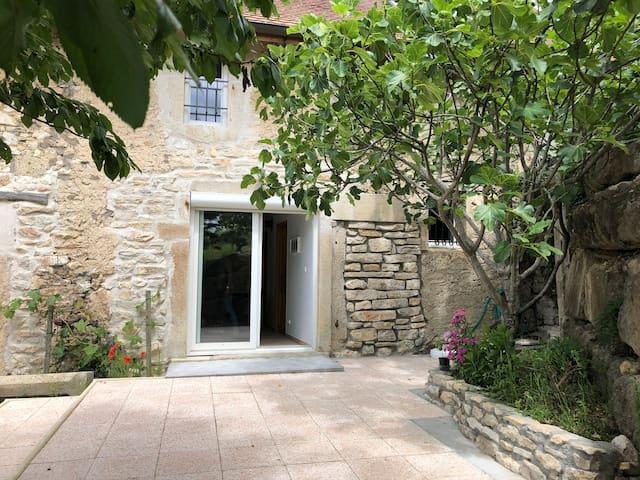 Maison en pierre au coeur des vignes - SEILLONNAZ