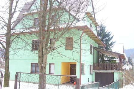 Superb mountain view accommodation! - Szczawa - Haus