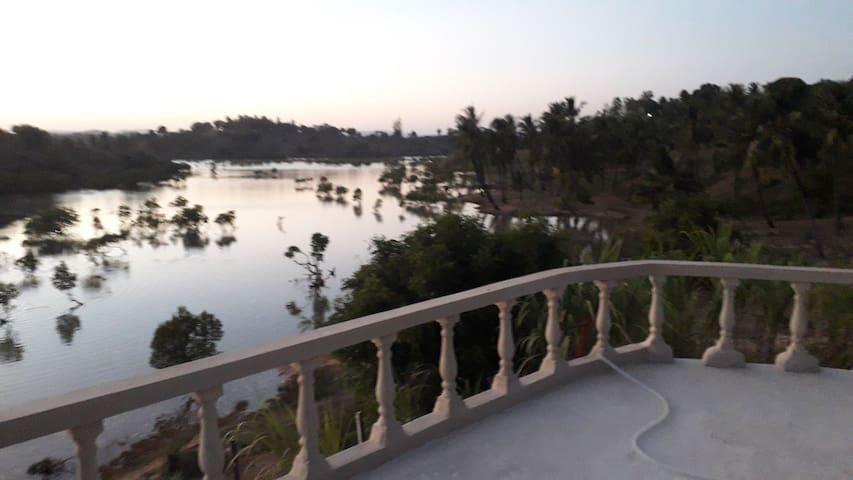 Majaoni Little Paradise 2