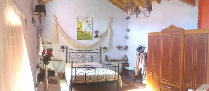 COZY HOUSE IN ALMENAR DE SORIA. SPAIN