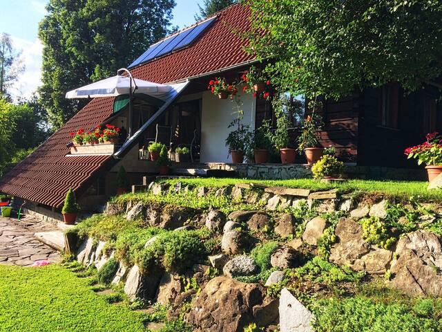 Waterfall Cottage - Ďurčiná - House