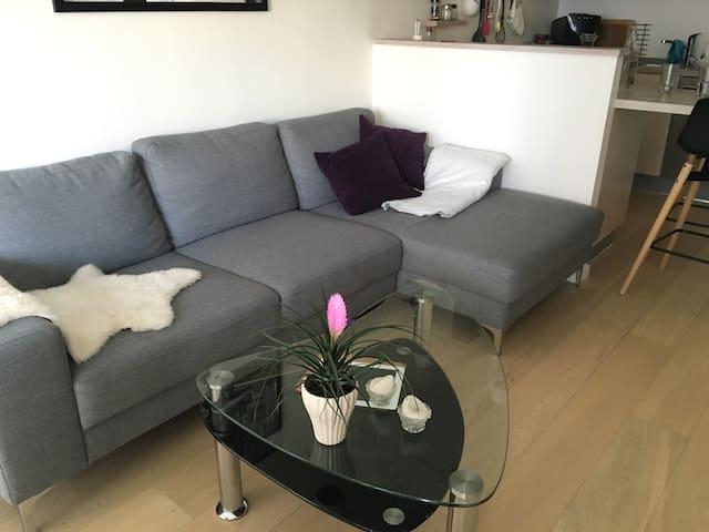 Classy flat in the city center of Aarhus - Aarhus - Apartment