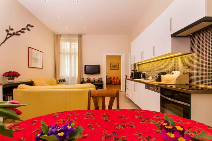 Modern flat on the main Avenue Andrassy - Budapest - Apartment