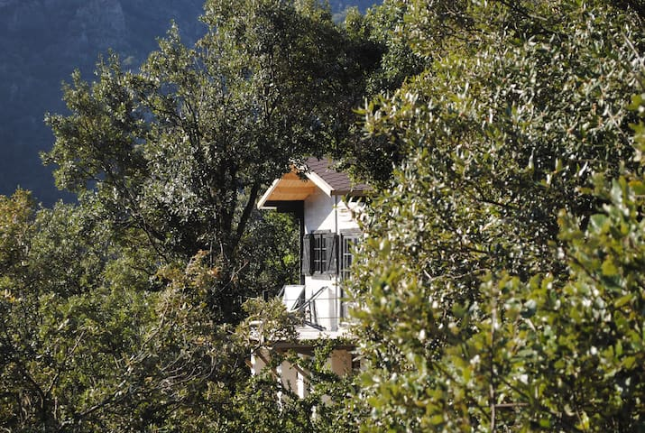 Sorène -Une Cabane en Cévennes - Pied-de-Borne - Cottage