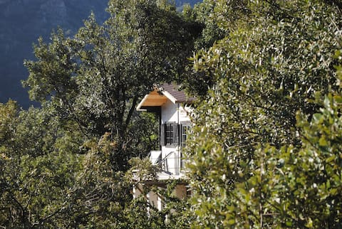 Sorène -Une Cabane en Cévennes