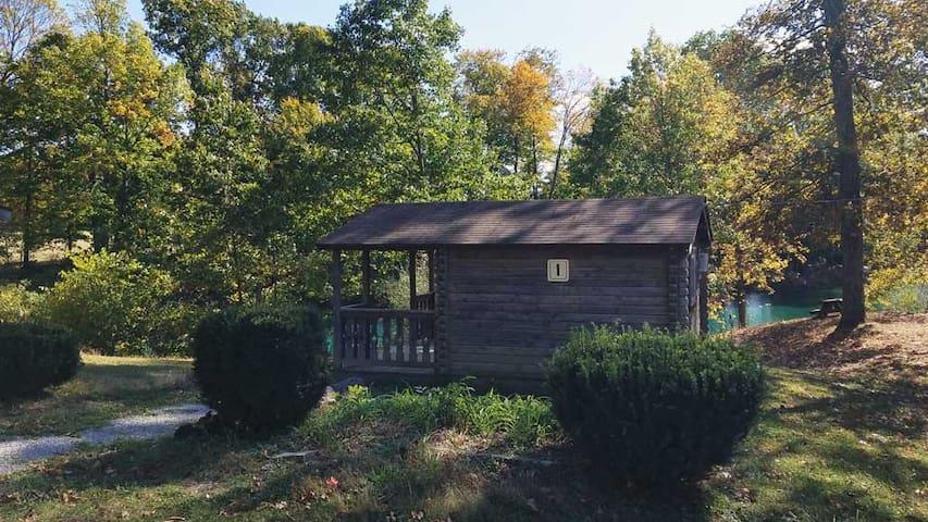 Primitive Cabin 1