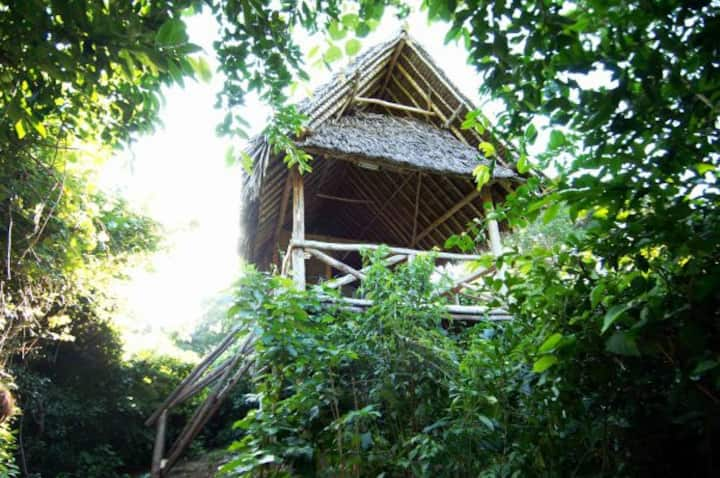 Treehouse in a Wildlife Sanctuary - Beach Access